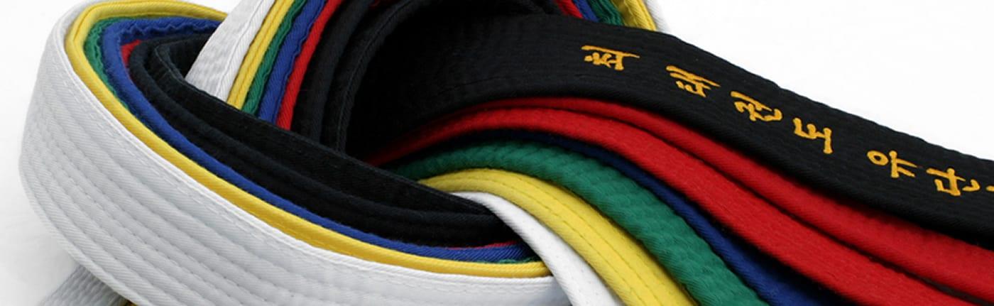martial art consultancy banner